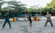 Top 5 giống chó nghiệp vụ được chọn nhiều nhất tại Việt Nam